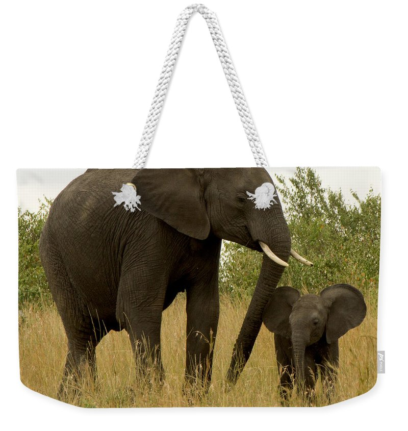 Elephants Weekender Tote Bag featuring the photograph Mom And Little by Amy Warr