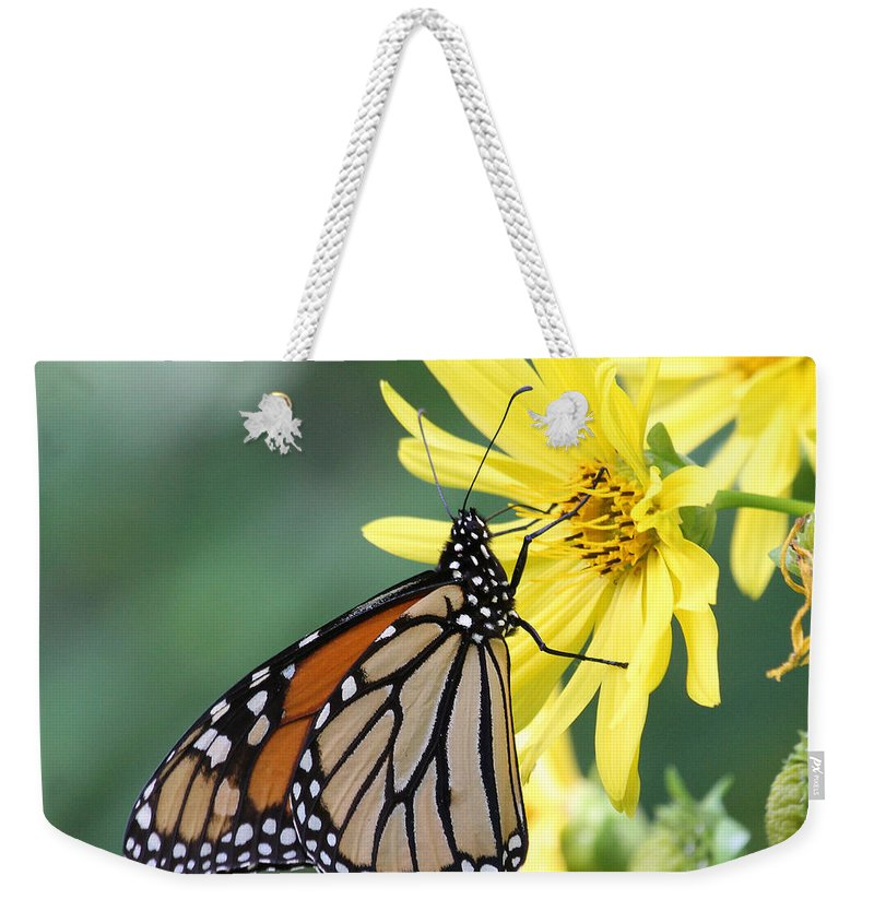 Monarch Weekender Tote Bag featuring the photograph Monarch Beauty by Doris Potter