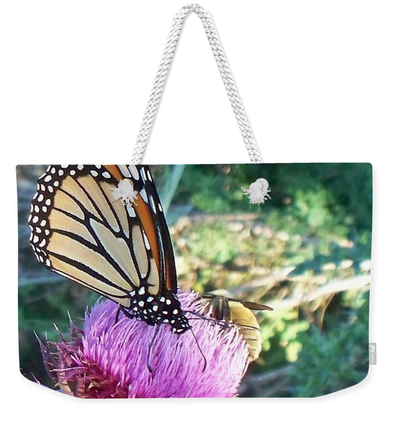 Butterfly Weekender Tote Bag featuring the photograph Monarch Butterfly by Eric Schiabor