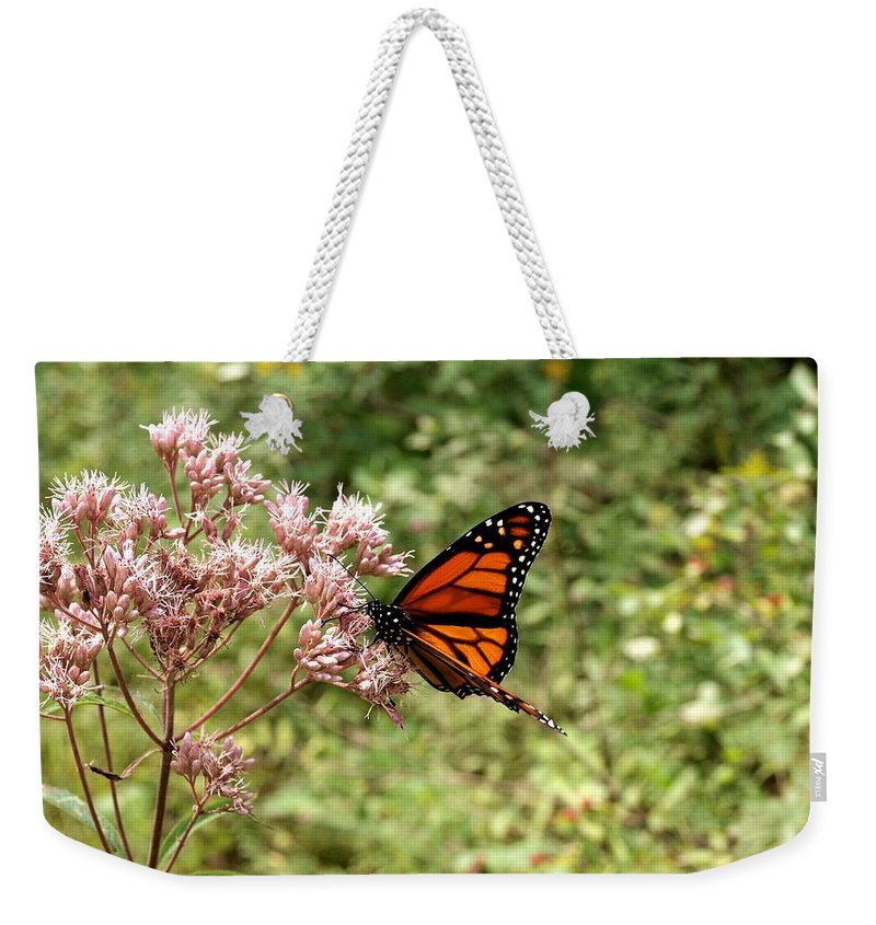 Monarch Weekender Tote Bag featuring the photograph Monarch Of The North by Joshua House