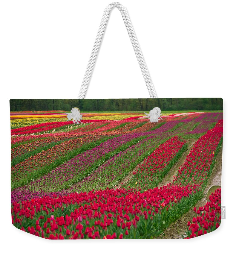 Monet Weekender Tote Bag featuring the photograph Monet Alive by Eti Reid