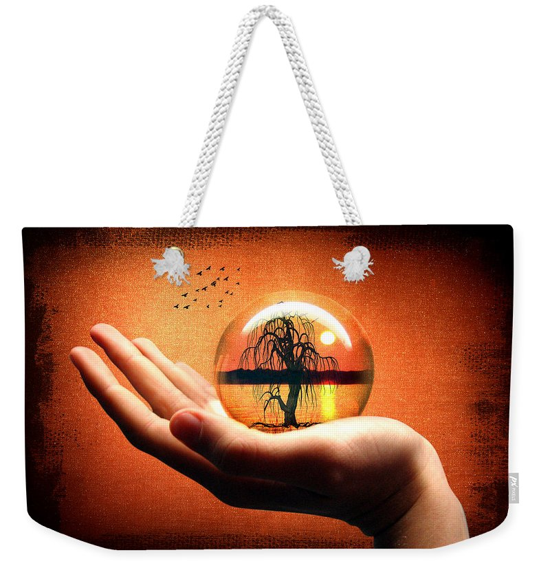 Mood Weekender Tote Bag featuring the photograph Mood Pic by Mark Ashkenazi