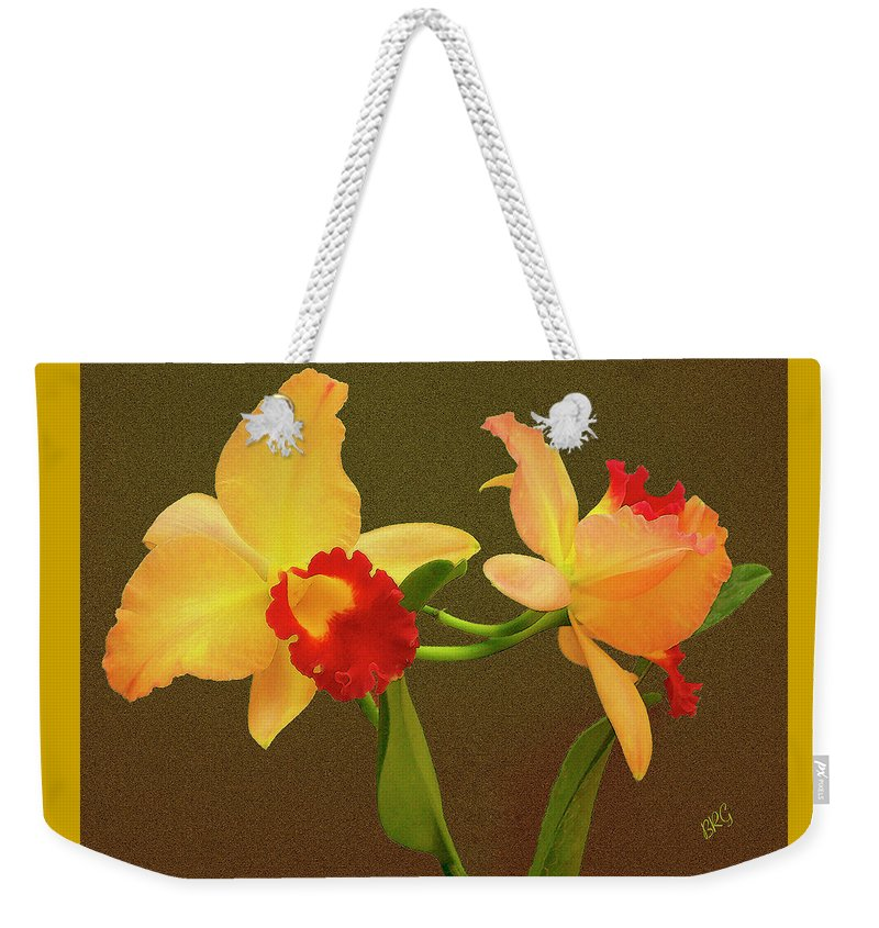 Orchid Weekender Tote Bag featuring the photograph Moonlight Lady Orchid by Ben and Raisa Gertsberg