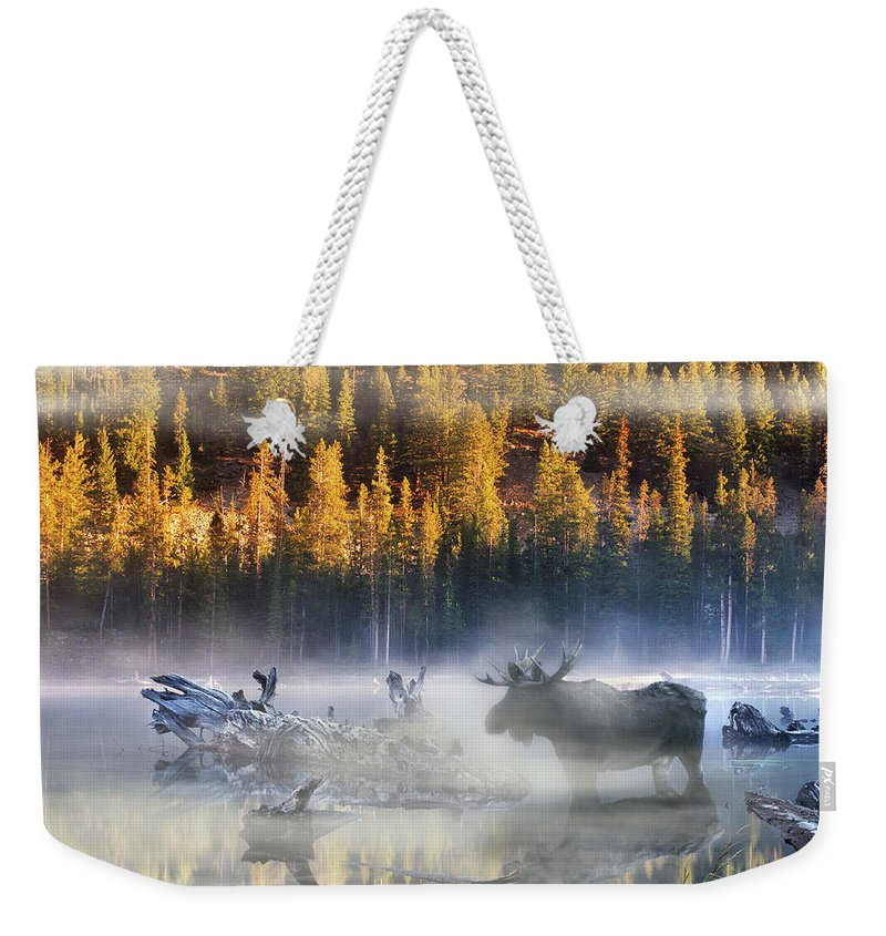 Nature Weekender Tote Bag featuring the photograph Moose Lake by Leland D Howard