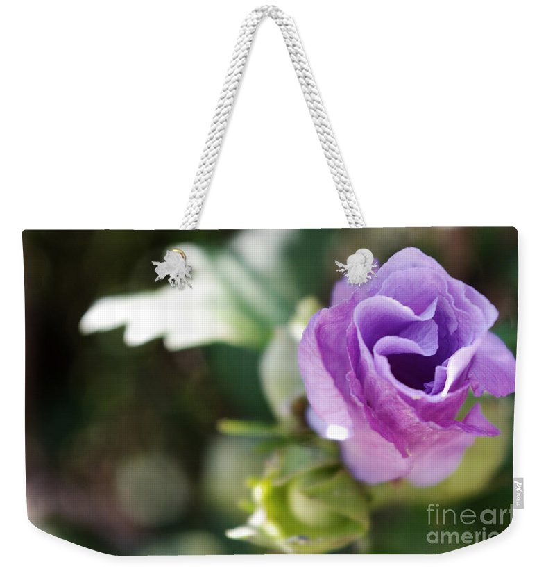Weekender Tote Bag featuring the photograph Morning Blossom by Kara Duffus