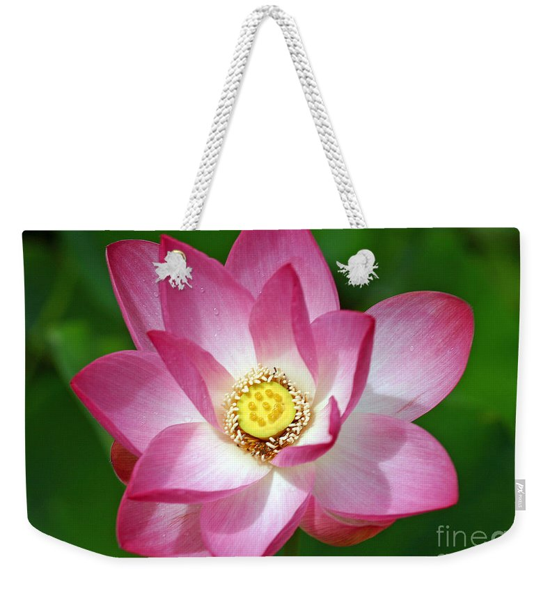 Flower Weekender Tote Bag featuring the photograph Morning Dew by Bob Hislop