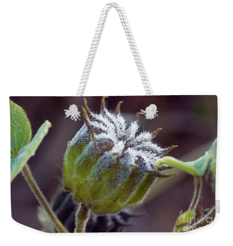 Fuzzy Flower Weekender Tote Bag featuring the photograph Morning Frost by Optical Playground By MP Ray