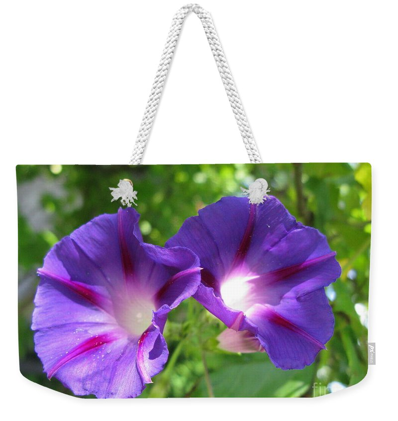Ipomea Weekender Tote Bag featuring the photograph Morning Glory Couple Or 2 Purple Ipomeas by Ausra Huntington nee Paulauskaite