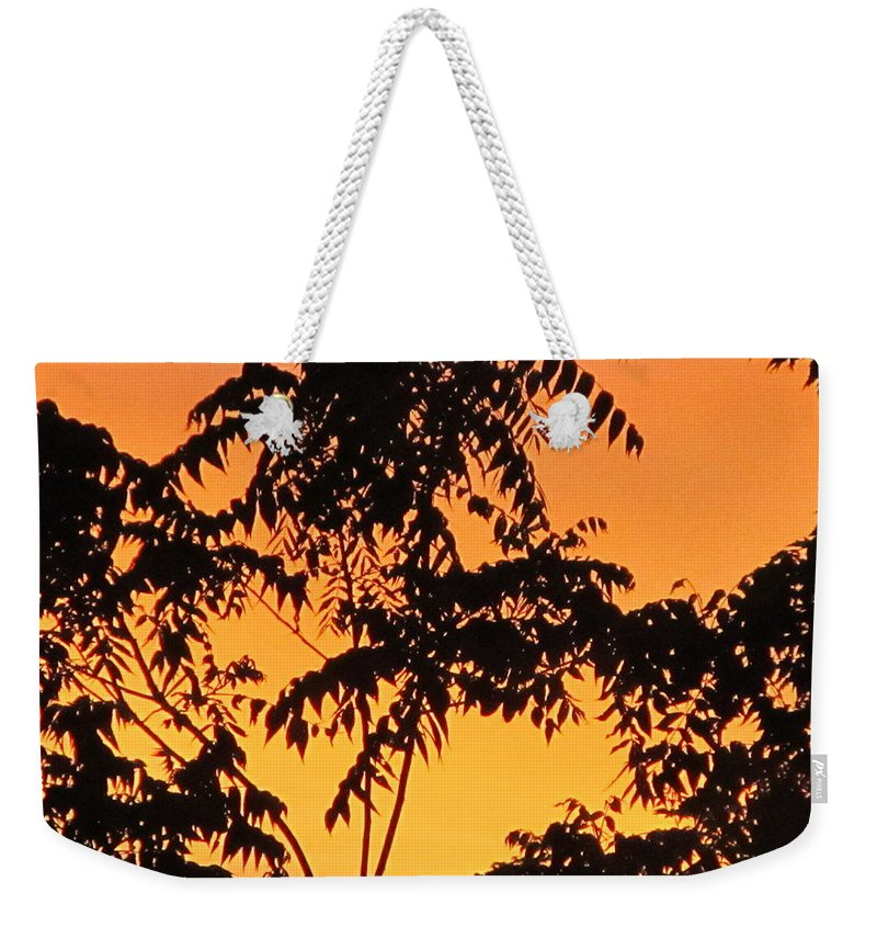 Sunrise Weekender Tote Bag featuring the painting Morning Light by Robert Nacke