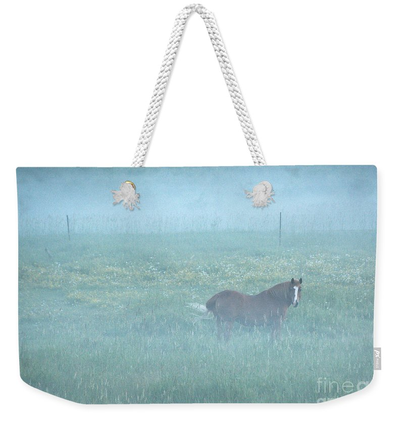 Landscape Weekender Tote Bag featuring the photograph Morning Mist by Cheryl Baxter