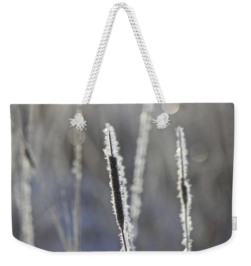 Frost Weekender Tote Bag featuring the photograph Morning Sparkle by Penny Meyers
