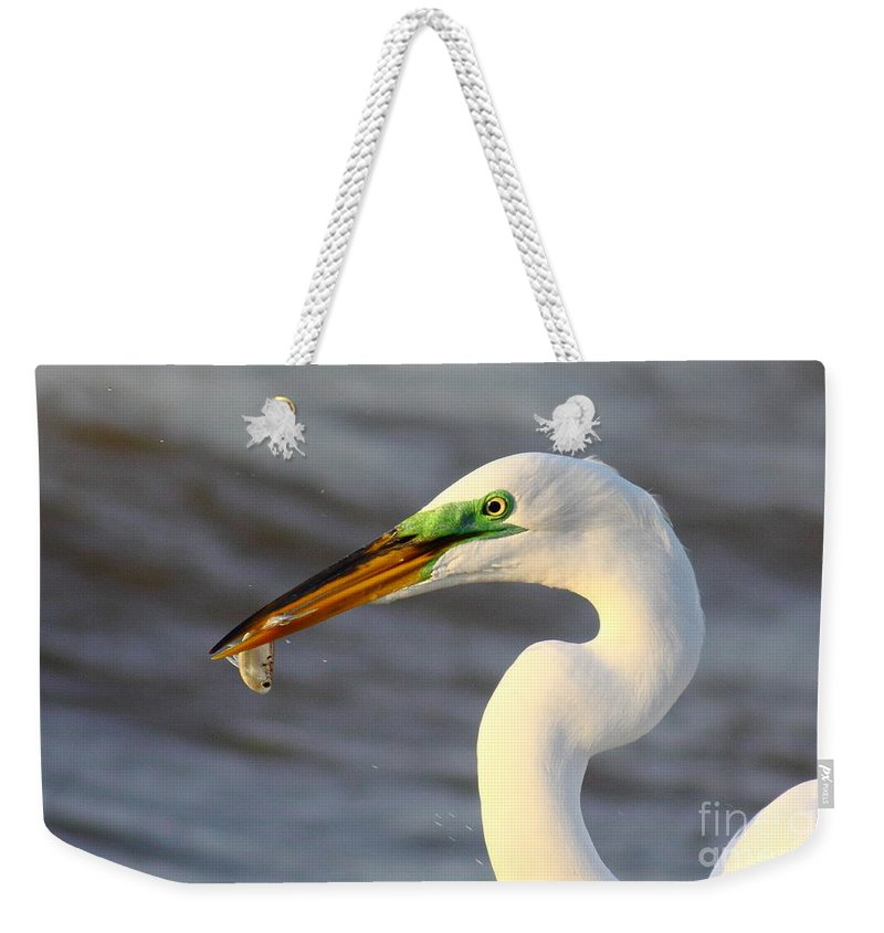 Animal Weekender Tote Bag featuring the photograph Morning's Catch by Robert Frederick