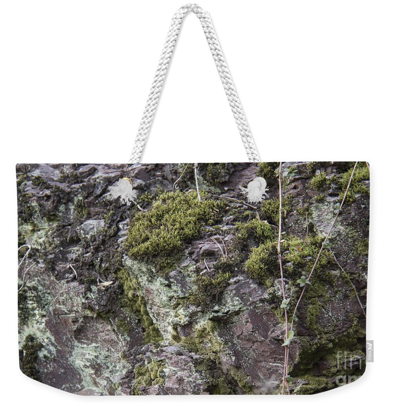Lichen Weekender Tote Bag featuring the photograph Moss And Lichen by Teresa Mucha