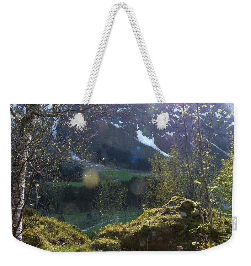 Weekender Tote Bag featuring the photograph Moss And Sushine by Katerina Naumenko