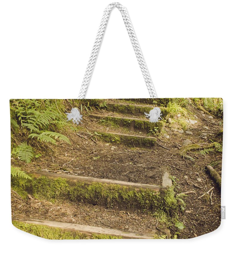 Moss Weekender Tote Bag featuring the photograph Mossy Path by Heather Applegate