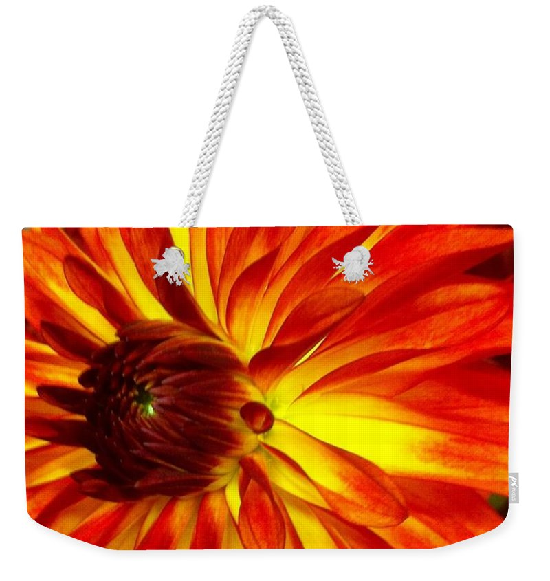 Orange To Yellow Dahlia Flower. Flower Weekender Tote Bag featuring the photograph Mostly Orange Dahlia Flower by Susan Garren