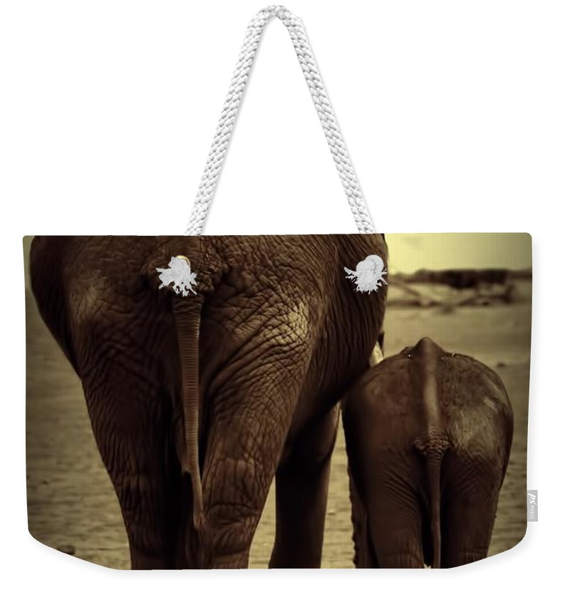 Mother And Baby Elephant Weekender Tote Bag featuring the photograph Mother And Baby Elephant In Black And White by Amanda Stadther
