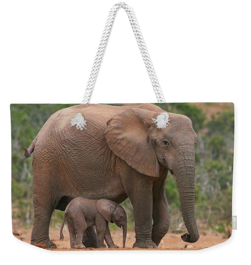 Nomad Photographs Weekender Tote Bags