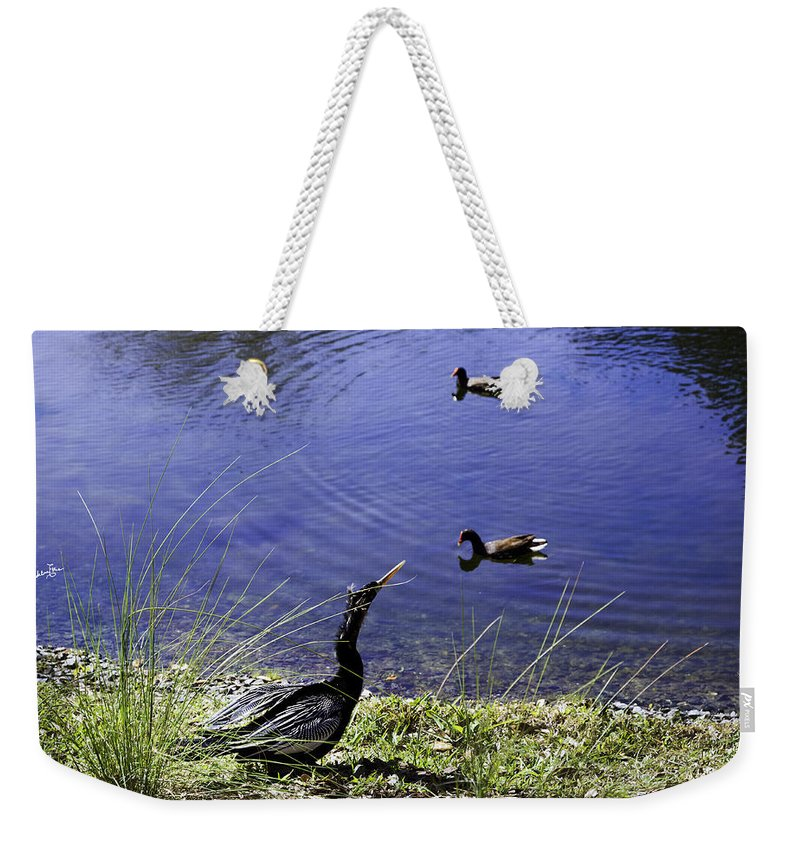 Pond Weekender Tote Bag featuring the photograph Mother Nature's Gift by Madeline Ellis