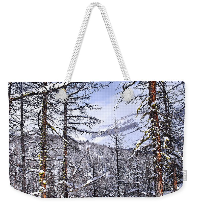 Tree Weekender Tote Bag featuring the photograph Mountain Landscape by Elena Elisseeva