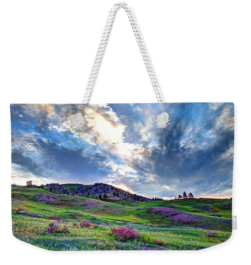 Mountains Weekender Tote Bag featuring the photograph Mountain Meadow Of Flowers by John Lee