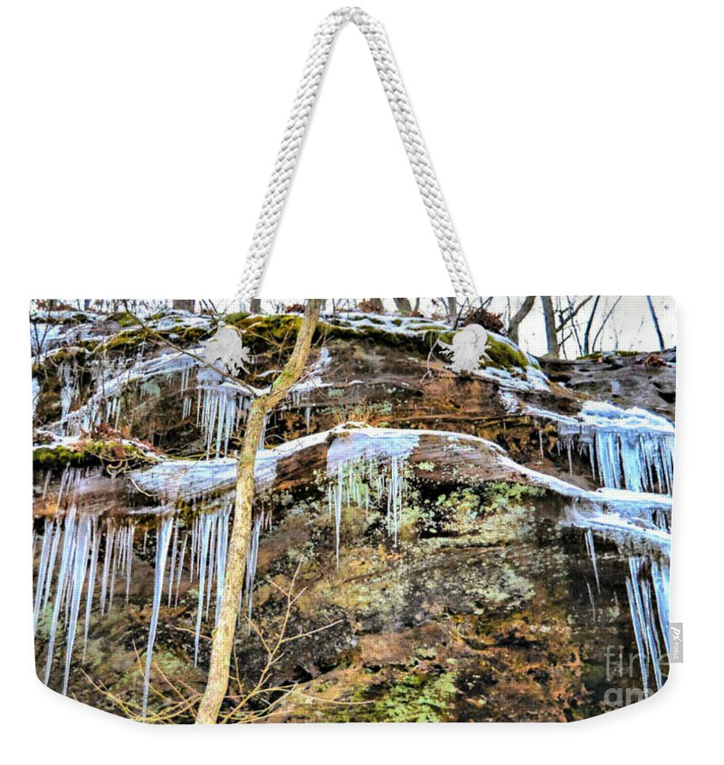 Landscape Weekender Tote Bag featuring the photograph Mountain Spring Beauty by Peggy Franz