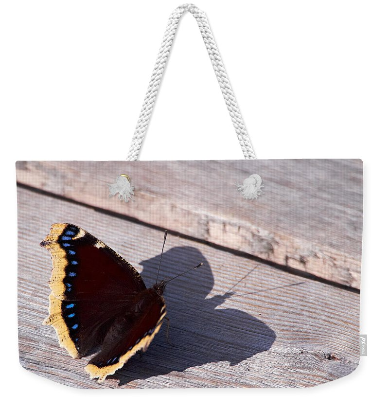 Finland Weekender Tote Bag featuring the photograph Mourning Cloak by Jouko Lehto