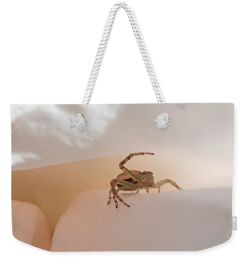 Spider Weekender Tote Bag featuring the photograph Move Along Please by Steve Taylor