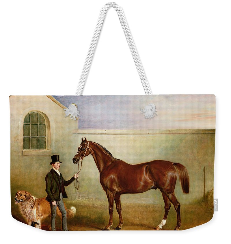 Horse; Pet; Groom Weekender Tote Bag featuring the painting Mr Meakin Holding Sir Robert Peels Chestnut Hunter With His Dogs Hector And Jem by John E Ferneley