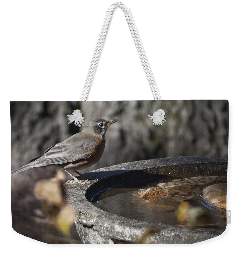 Robin Weekender Tote Bag featuring the photograph Mrs Robin by Teresa Mucha