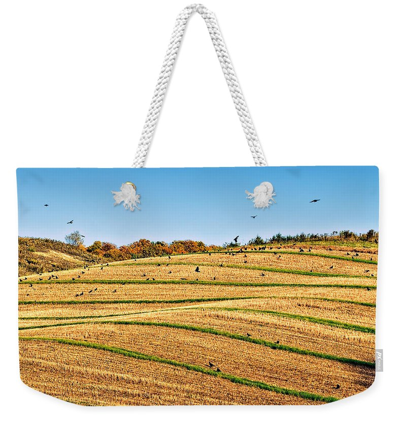 Ontario Weekender Tote Bag featuring the photograph Murder's Row by Steve Harrington