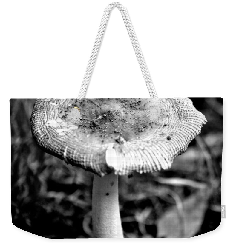 Mushroom Weekender Tote Bag featuring the photograph Mushroom In Black And White by Tara Potts
