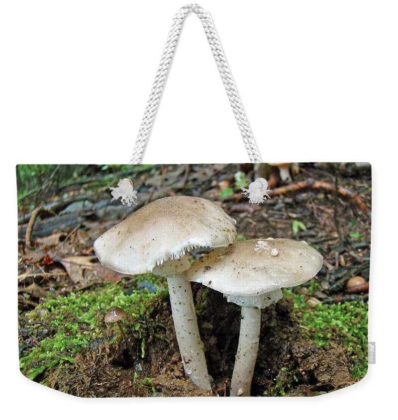 Mushrooms Weekender Tote Bag featuring the photograph Mushroom Twins - All Grown Up by Mother Nature