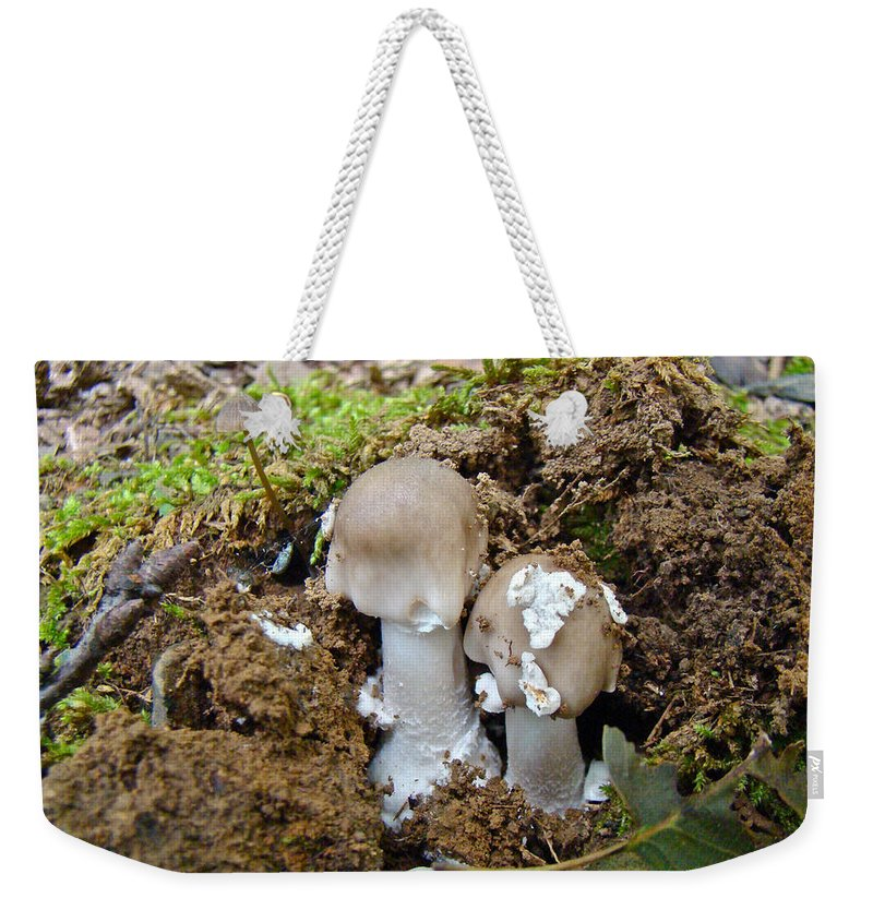 Mushrooms Weekender Tote Bag featuring the photograph Mushroom Twins - As Youngsters by Mother Nature