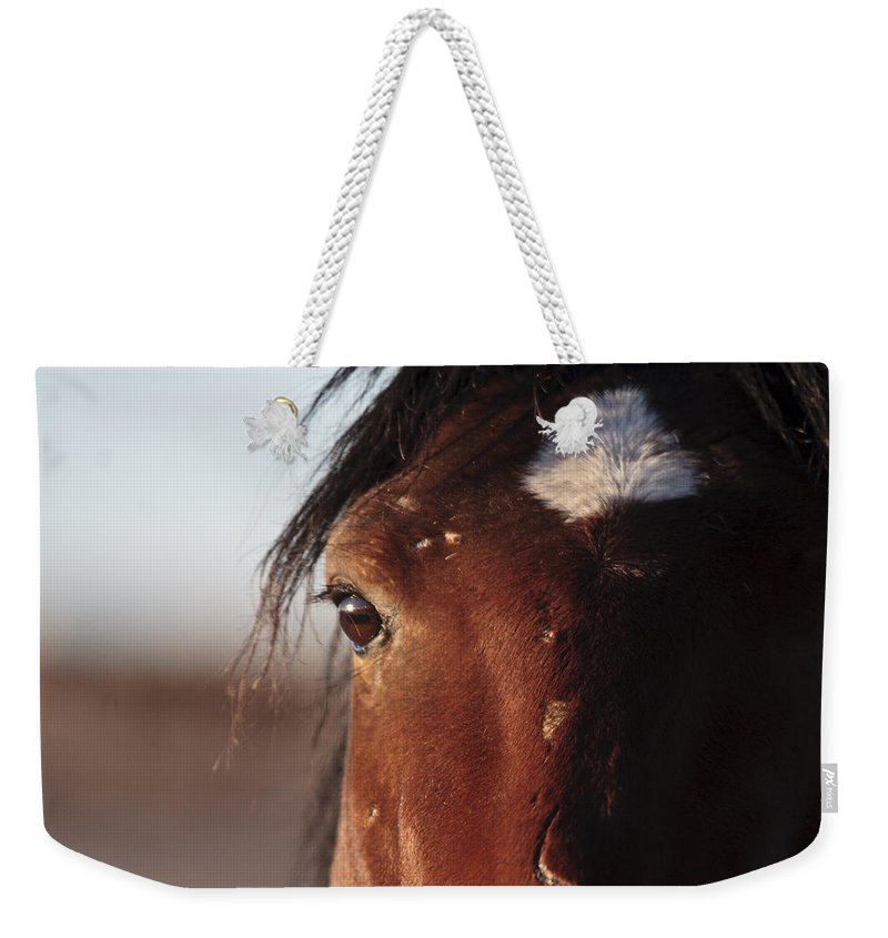 Mustang Battle Wounds Weekender Tote Bag featuring the photograph Mustang Battle Wounds by Wes and Dotty Weber