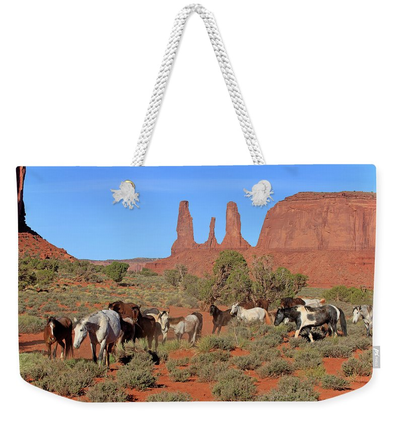 Scenics Weekender Tote Bag featuring the photograph Mustang by Tier Und Naturfotografie J Und C Sohns