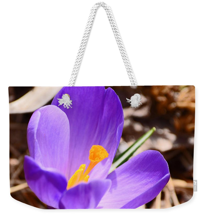 Flower Weekender Tote Bag featuring the photograph My First Bloom Of 2013 by Lori Tambakis