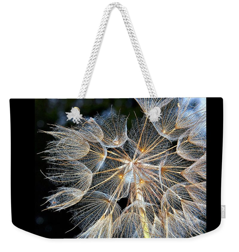 Website Weekender Tote Bag featuring the photograph My Website by Steve Harrington