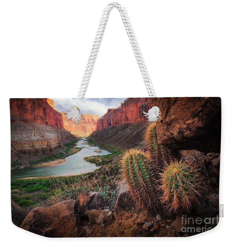 America Weekender Tote Bag featuring the photograph Nankoweap Cactus by Inge Johnsson