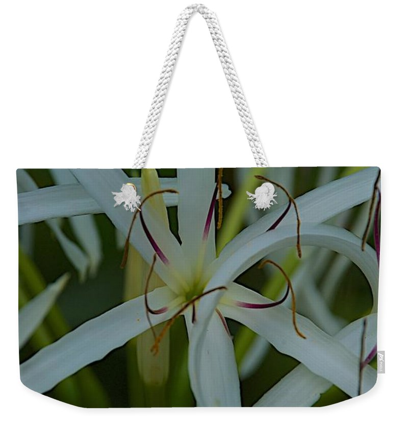 Flower Weekender Tote Bag featuring the photograph Naples Zoo by Joseph Yarbrough