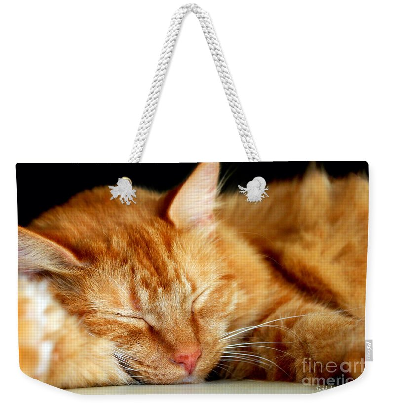 Feline Weekender Tote Bag featuring the photograph Naptime by Todd Blanchard