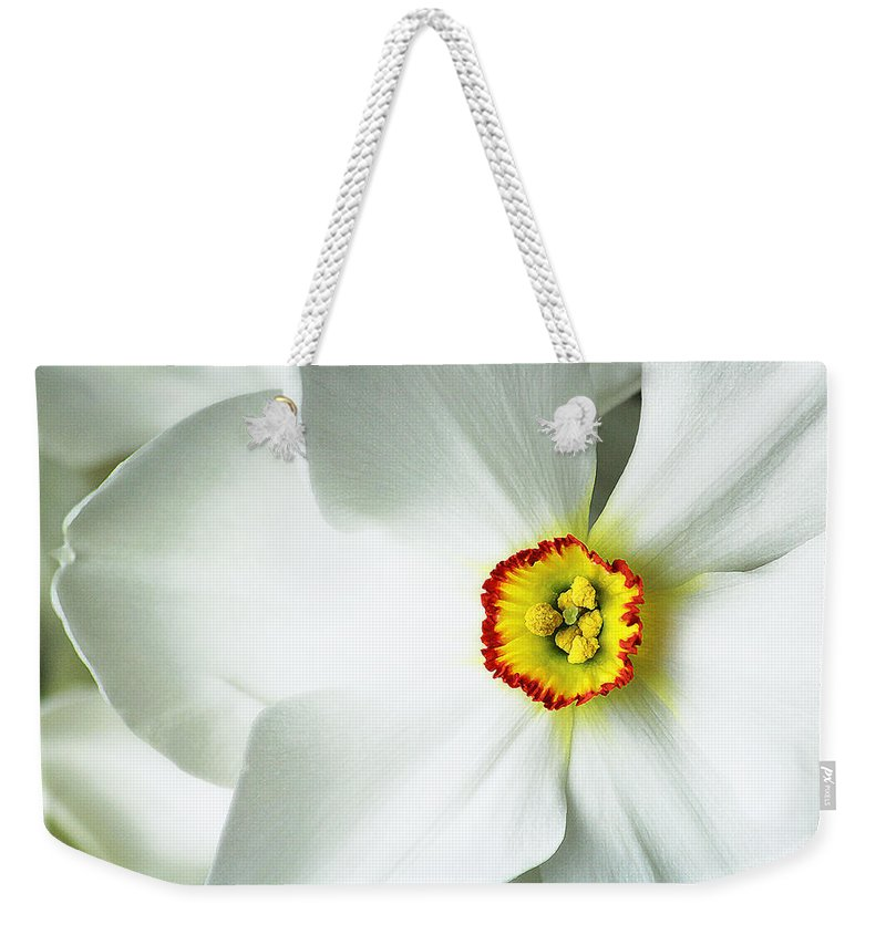 Narcissus Weekender Tote Bag featuring the photograph Narcissus by Andy Readman