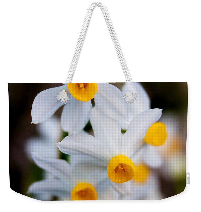 Angustifolius Weekender Tote Bag featuring the photograph Narcissus Tazetta by Stelios Kleanthous