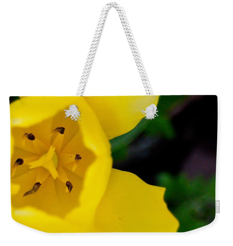 Flower Weekender Tote Bag featuring the mixed media Natalie by Trish Tritz