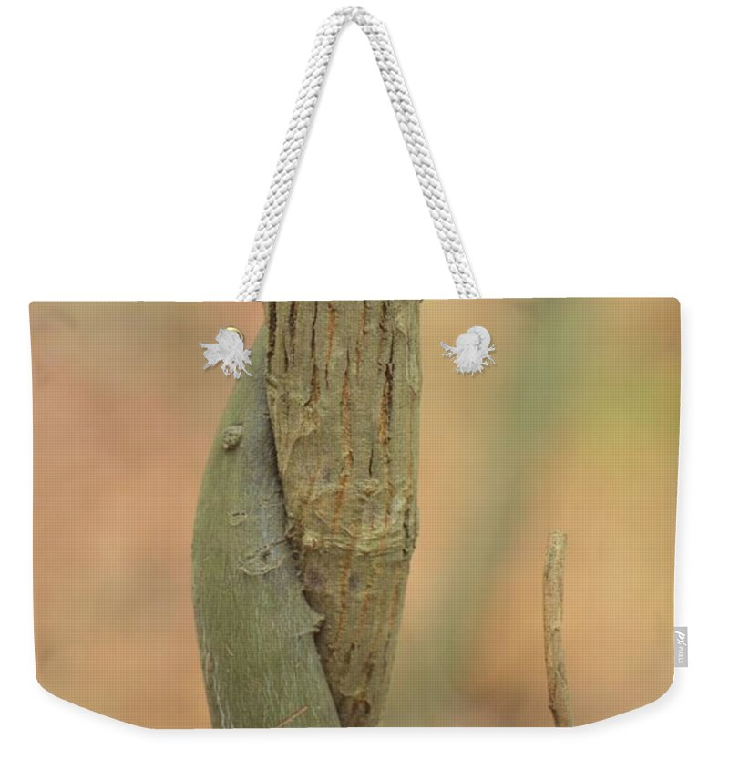 Natural Abstract 50 Weekender Tote Bag featuring the photograph Natural Abstract 50 by Maria Urso