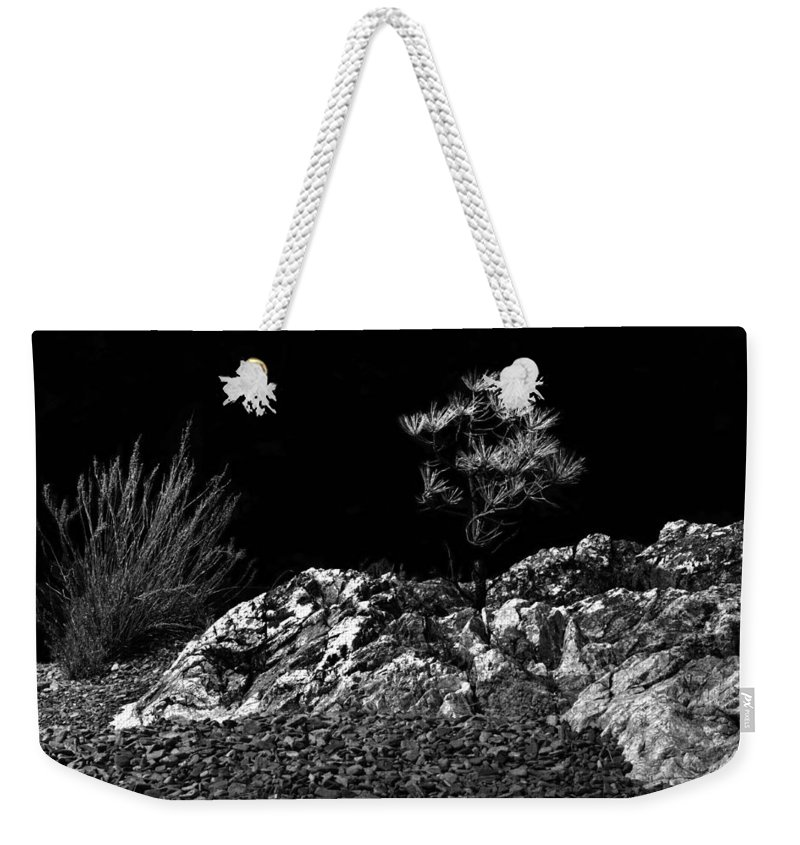 B&w Weekender Tote Bag featuring the photograph Natural Bonsai 2 by Lee Santa
