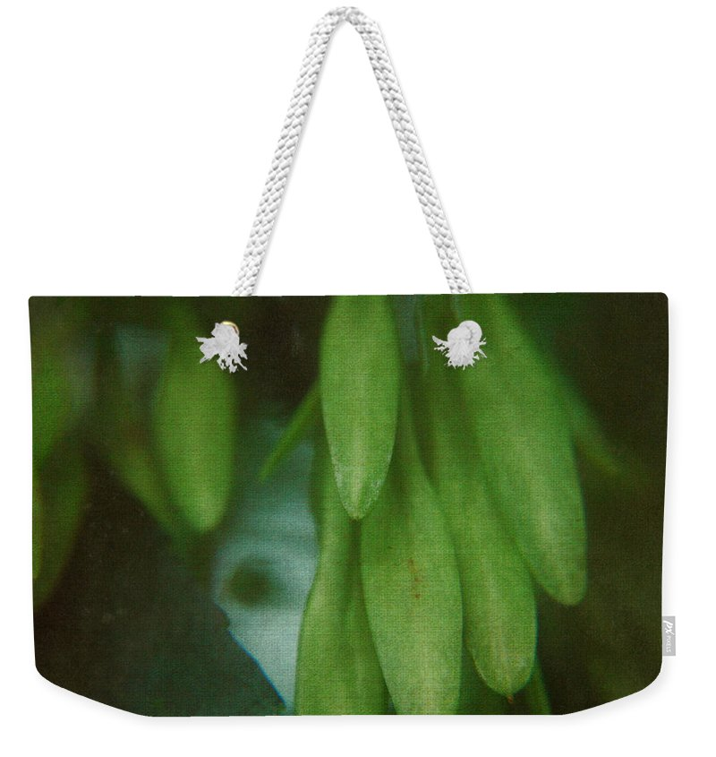 Nature Weekender Tote Bag featuring the photograph Natural Deco by Rhonda Barrett