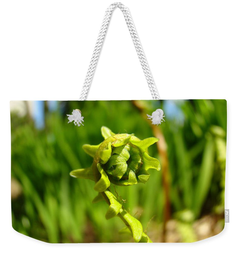 Fern Weekender Tote Bag featuring the photograph Nature Green Fern Frond Unfolding Art Prints Ferns by Patti Baslee