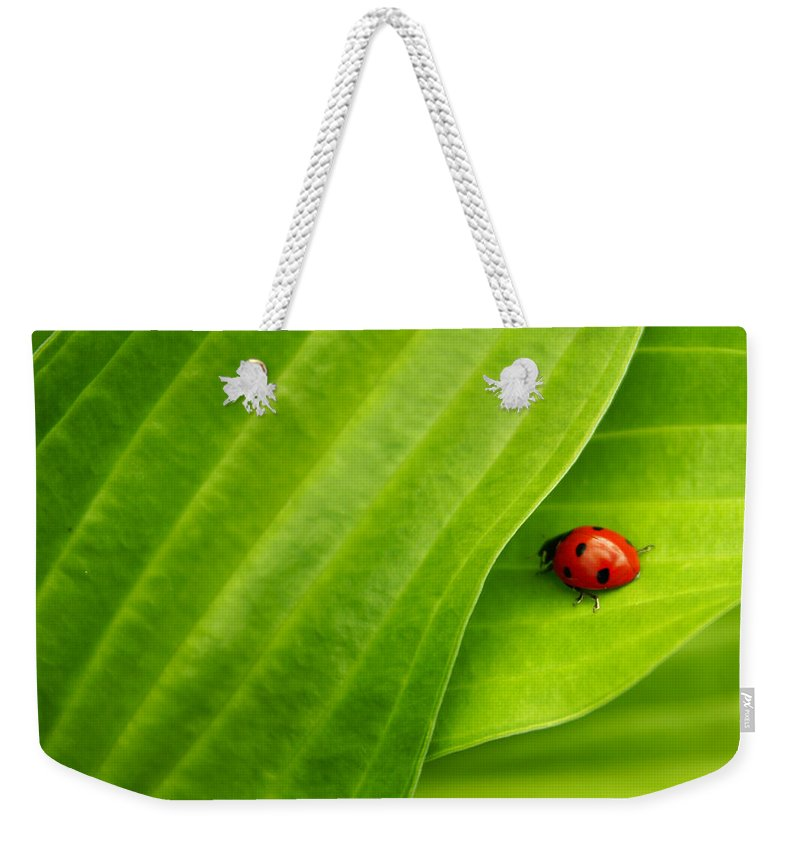 Ladybug Weekender Tote Bag featuring the photograph Naturellement Complementaire by Aimelle