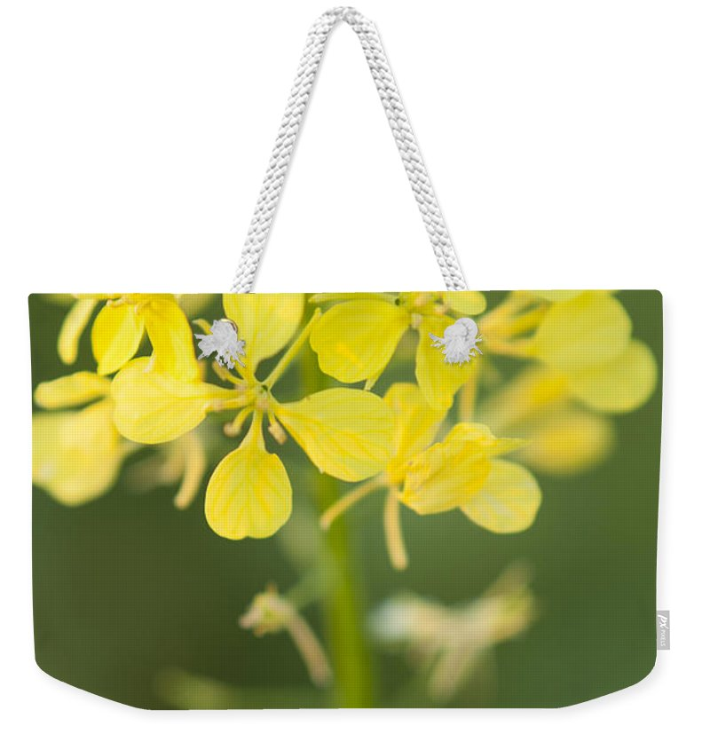 Trail Weekender Tote Bag featuring the photograph Natures Trails by Miguel Winterpacht